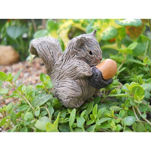 Mini Squirrel